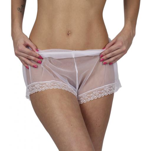 Sexy Sheer White French Knickers